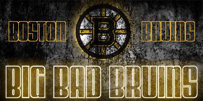 Boston Bruins Bos110