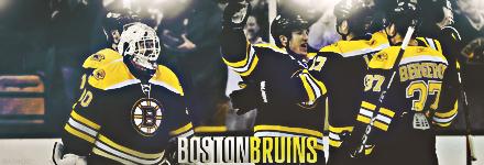 Boston Bruins Bos310