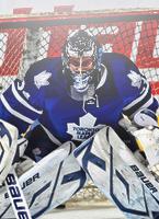 Avatar NHL Reimer13
