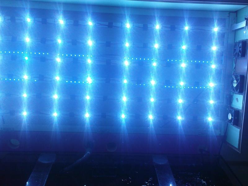 Ma future rampe LED - Page 2 Dsc00514