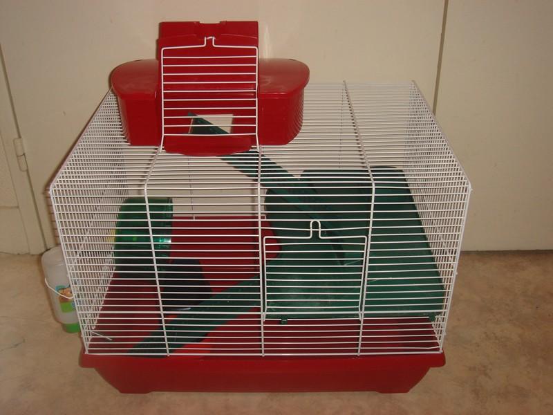 Vente cage et accessoires pour hamster Jingle10