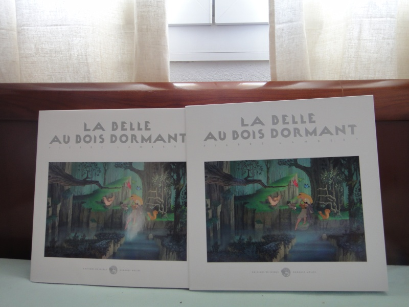La Belle au Bois Dormant de Pierre Lambert [Editions de l'Ecole Georges Méliès - 2013] Dsc03717