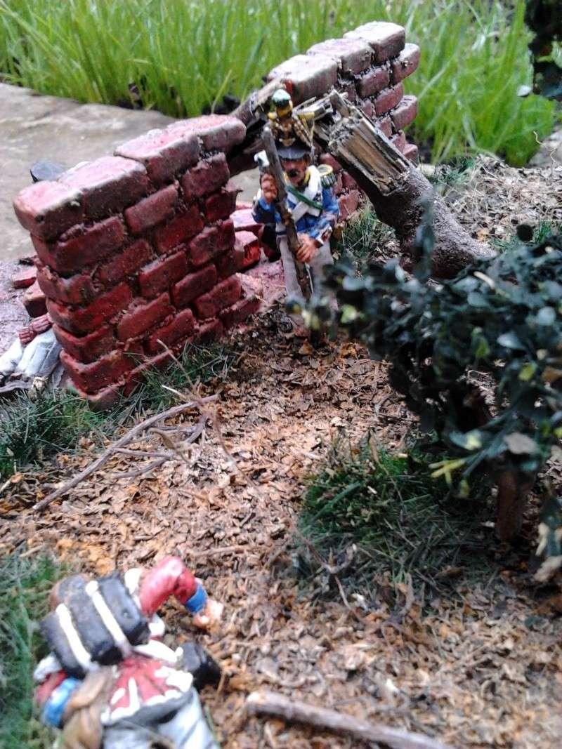 Projet diorama des combats à la ferme Hougoumont de Waterloo - Page 2 2012-118