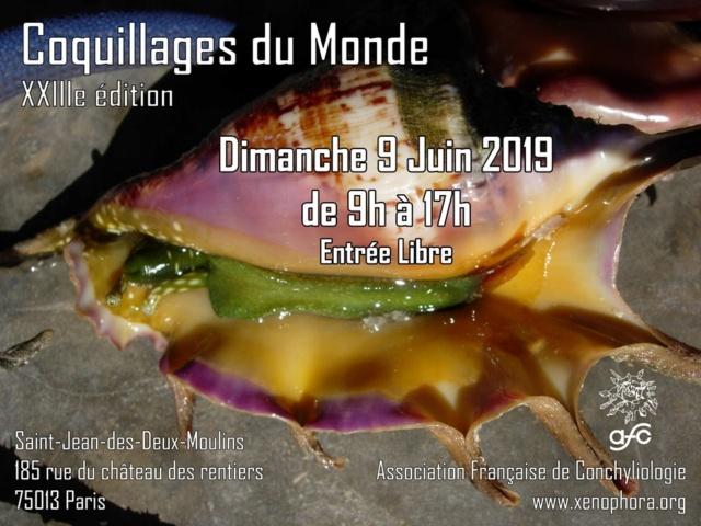 Dimanche 9 Juin 2019 - 23ième Édition de la Mini-Bourse de Paris 60521610