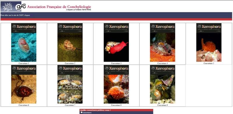 Concours photos pour Couverture du Xenophora X166 - Avril 2019 Captur12