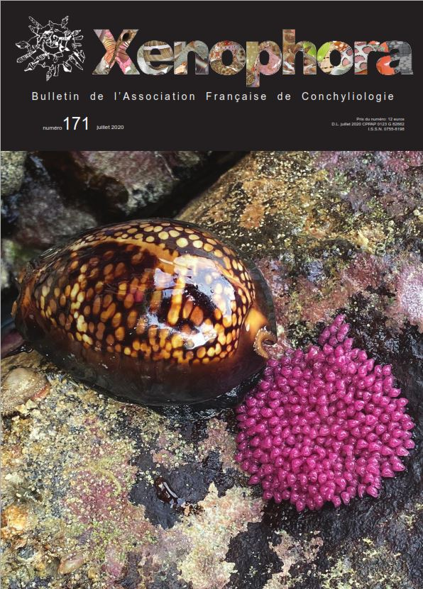 Xenophora N° 171 / Taxonomy N° 29 Couvx110