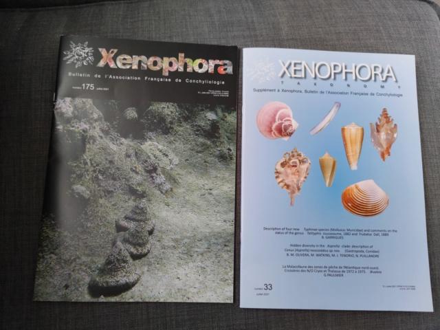 Xenophora 175 Img_2017