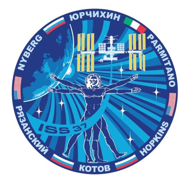 Vol de Luca Parmitano / Expedition 36-37 - VOLARE / Soyouz TMA-9M 24966010