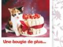 """quizz""""anniversaire"""" Annif810"""
