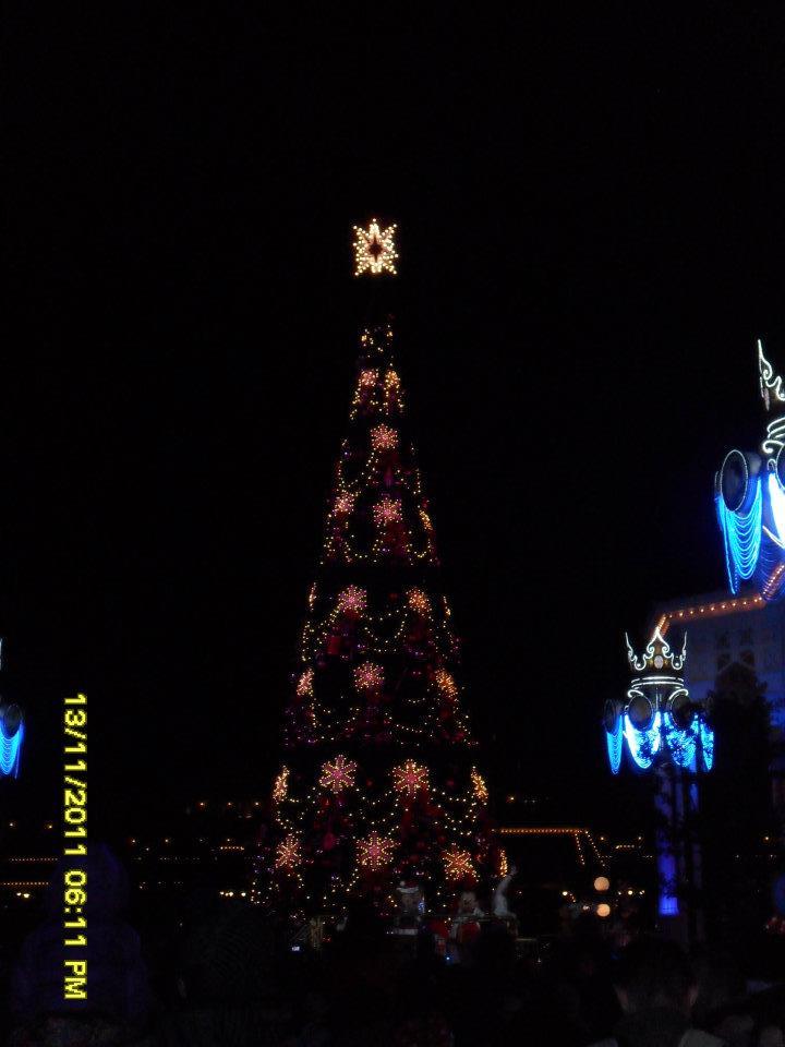 Le Noël Enchanté Disney (du 9 novembre 2012 au 6 janvier 2013) - Page 3 31350512