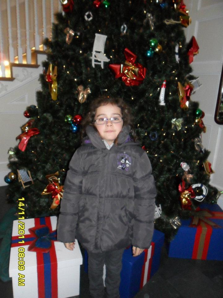 Le Noël Enchanté Disney (du 9 novembre 2012 au 6 janvier 2013) - Page 3 31951711