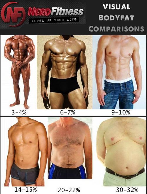 Srovnání - tuk v těle muže a ženy Tumblr12