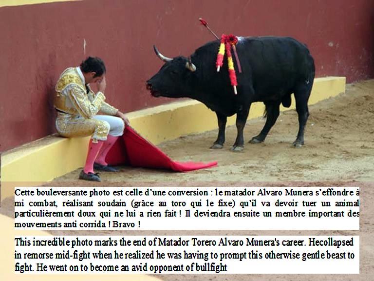 ANTI CORRIDA - Page 5 Alvaro10