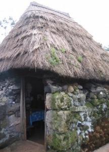 Des maisons Portugaises semblables o village d´Astérix. Cusinn19