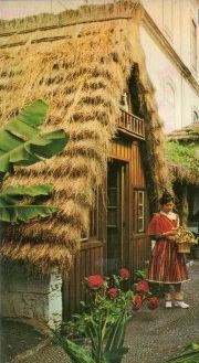 Des maisons Portugaises semblables o village d´Astérix. Postal10