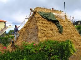 Des maisons Portugaises semblables o village d´Astérix. T310