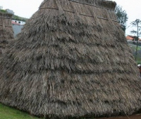 Des maisons Portugaises semblables o village d´Astérix. Trasei10