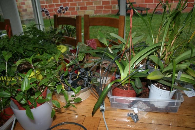 arrosage automatique special vacances pour plantes d'interieur - Page 2 Img_7011