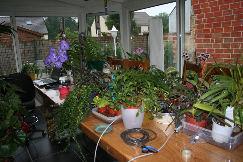 arrosage automatique special vacances pour plantes d'interieur - Page 2 Img_7014