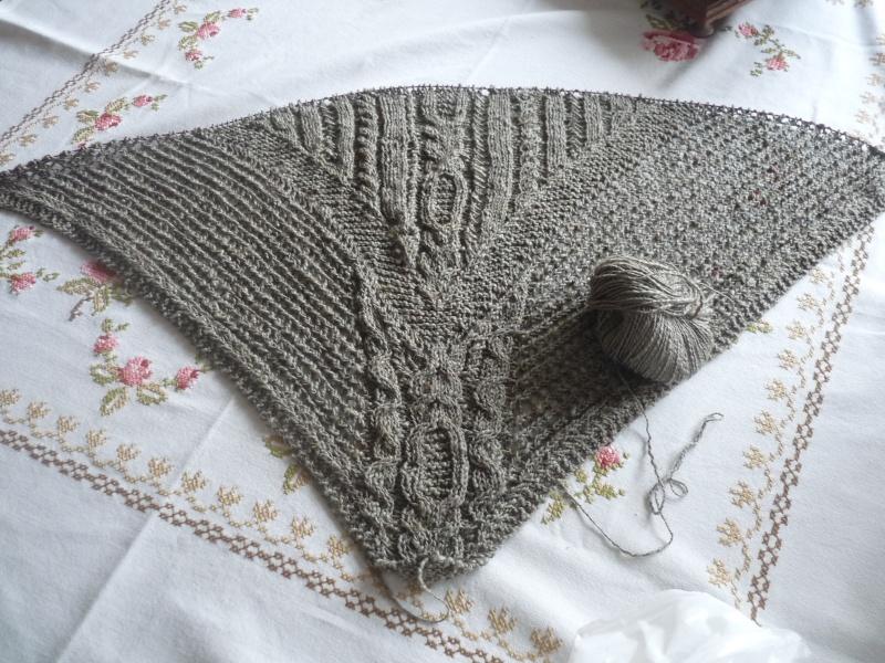 Châles au tricot P1030214