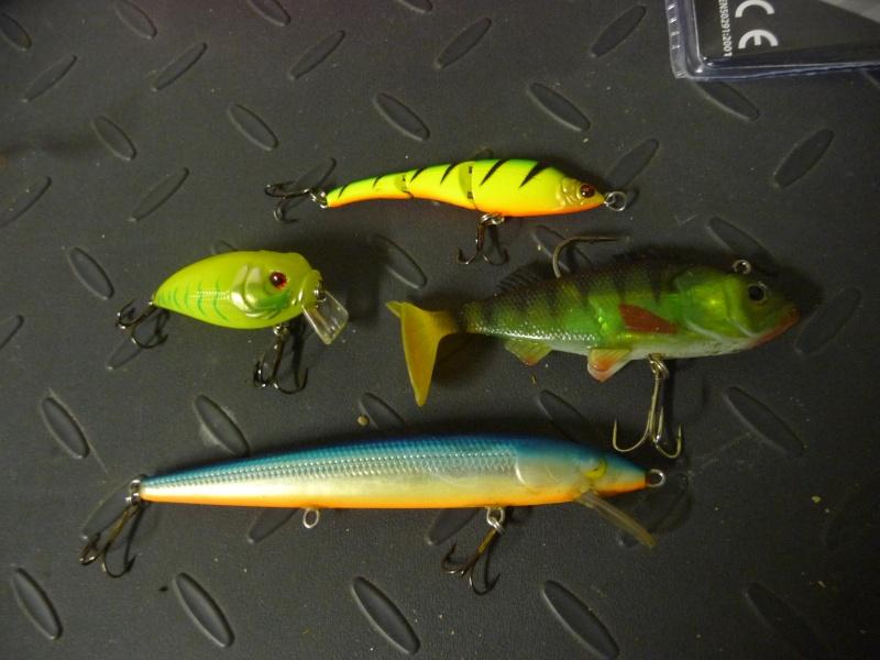 La riviére et ces articles de pêche ! P1040413