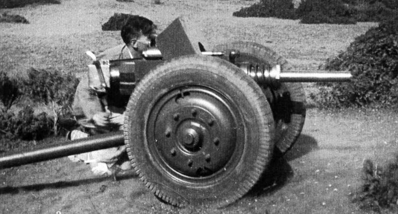 37 mm de marine anti-char Canon_19