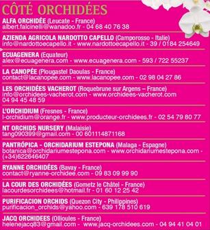 Expo Orchidées de l'abbaye de Fontfroide (11) Captur10