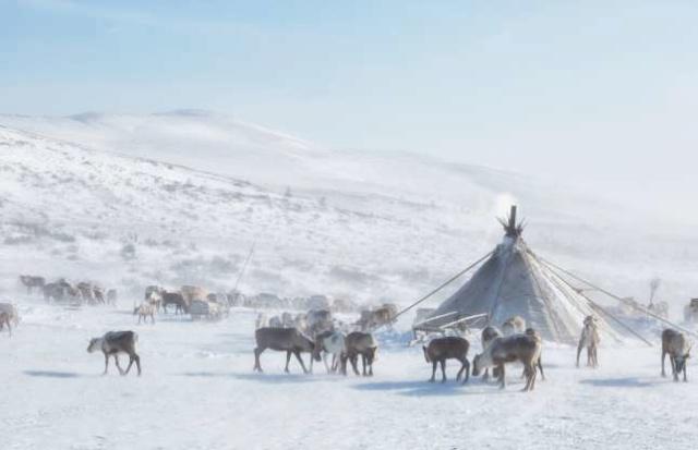 在地球的偏僻角落 Nenets10