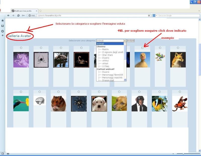 7th >>> istruzioni per caricamento immagini d'avatar    9-avat10