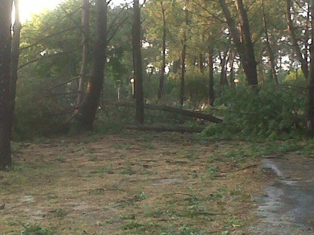 Orages et Bilans des orages dans le Médoc 94475410