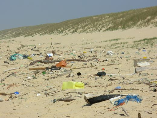 Protégeons nos plages et nos dunes 99299810