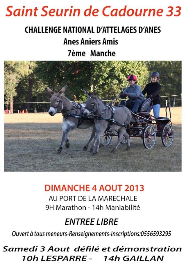 Challenge National d'attelages d'anes le 4 Aout a St Seurin de Cadourne 99393810