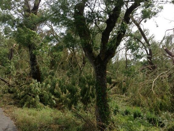 Orages et Bilans des orages dans le Médoc Bqrweq10