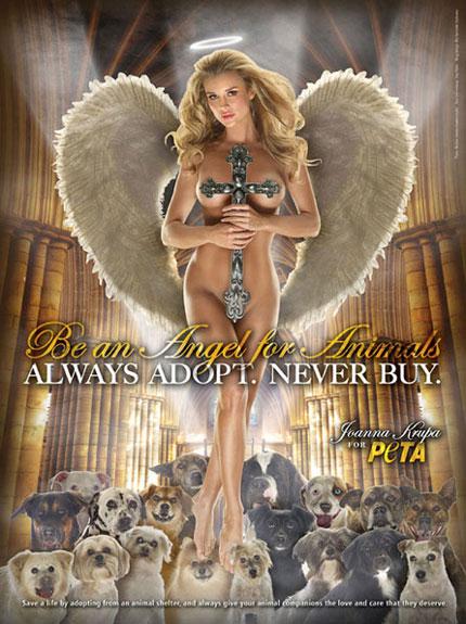 penampakan malaikat kristen pendamping anjing Crucif10