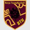Foro gratis : Liga UFH | United For Haxball Escudo10