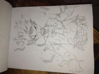 Tout mes mangas dessinés Img_0512