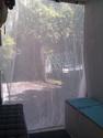 survivre aux mosquitos Imag1626