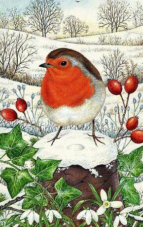 E sarà Natale. - Pagina 4 226e1b10