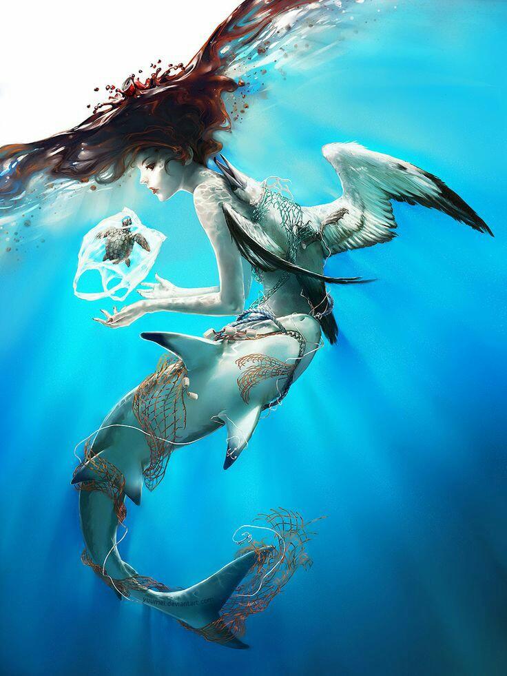 """Gallerie fotografiche : """"Finestra sul mare""""   - Pagina 2 9cef9f14"""