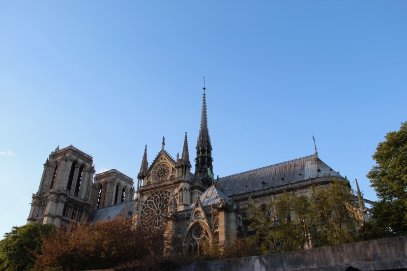 Notre-Dame de Paris  03310