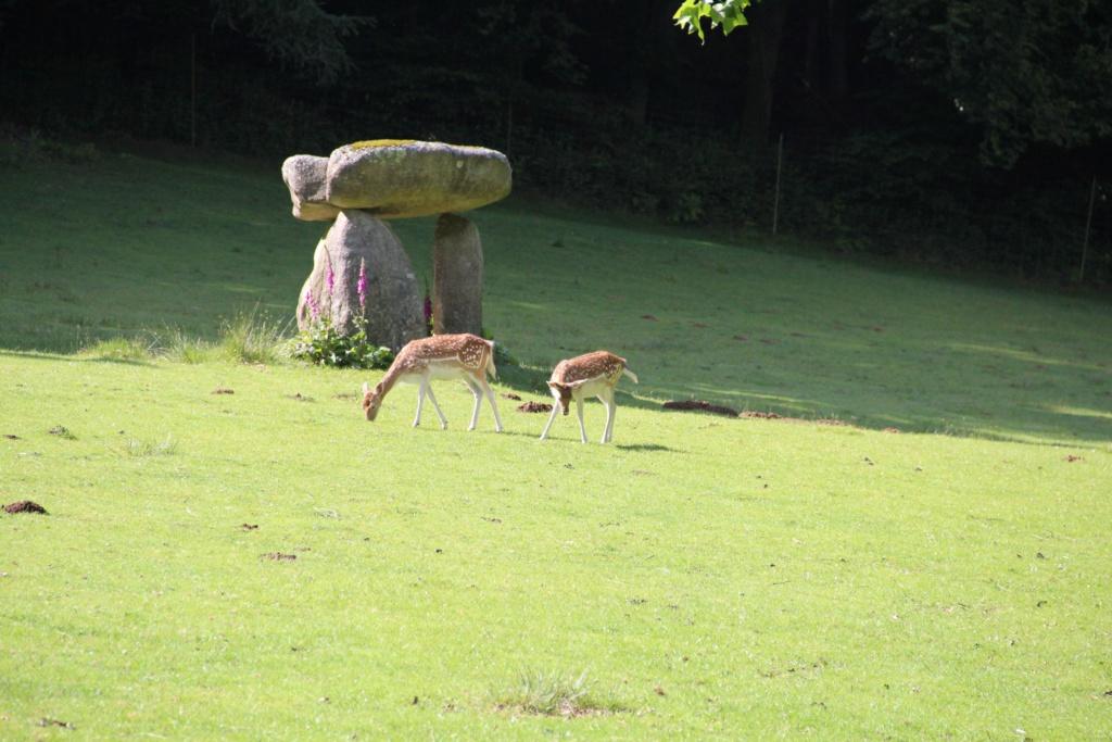 Parc naturel Img_2110