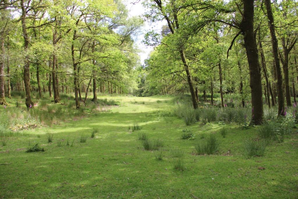 Parc naturel Img_2212