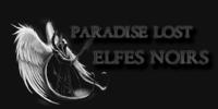 Elfe noir - Inquisiteur sanglant