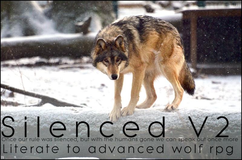 Silenced V2 Spring11