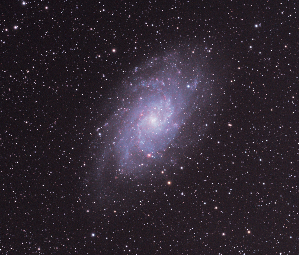 M33 M3318110