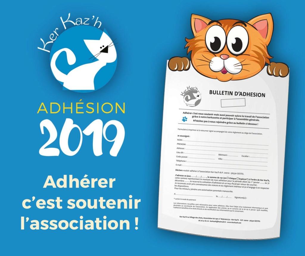 Forum adoption chats: Kerkaz'h Le Village des Chats - Portail 48359410