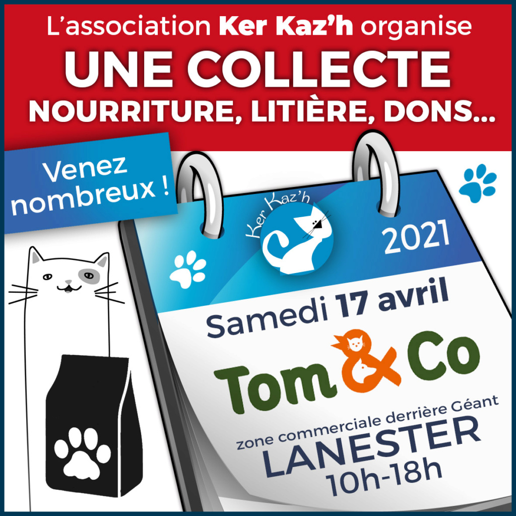 Forum adoption chats: Kerkaz'h Le Village des Chats - Portail Collec12
