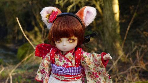 ❀ Kitsune ❀ BJD AI Tsubaki ❀ et Lavande ❀ Pukipuki Cupid ❀  P1400911