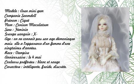 Fairyland* Littlefee Pongpong * Raphaël* Przose12