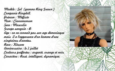 Fairyland* Littlefee Pongpong * Raphaël* Przose14